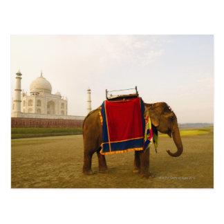 Perfil lateral de un elefante, el Taj Mahal, la Postal