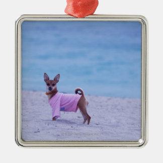 Perfil lateral de un perro que se coloca en la adorno cuadrado plateado