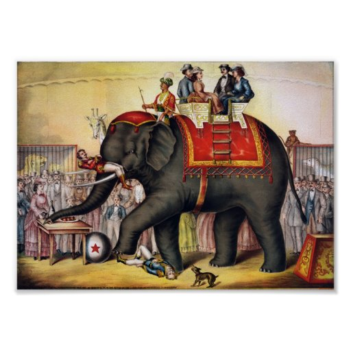 Performing Elephant Print