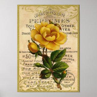 Perfume antiguo de los rosas amarillos poster