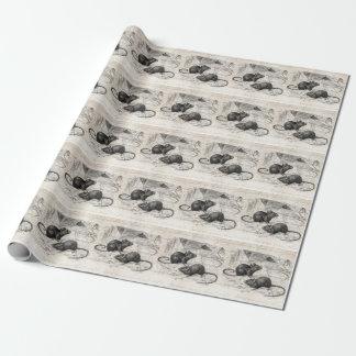 Pergamino retro de los ratones del ratón del papel de regalo