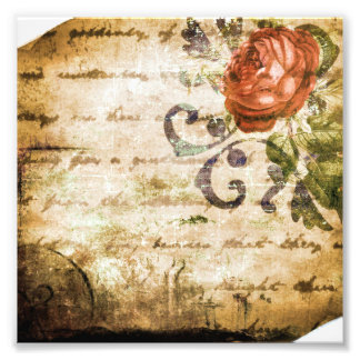 Pergamino subió sepia bonita del Victorian del Fotografía