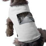 Pérgola en invierno, Central Park, NYC de las glic Ropa De Mascota