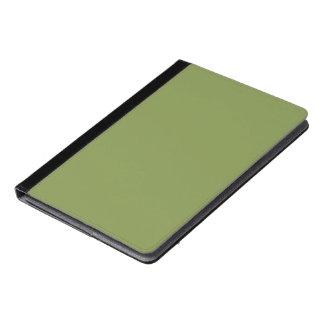 Peridot iPad Air Case