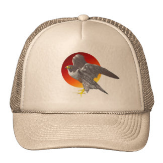 Perigrine Sun Mesh Hats