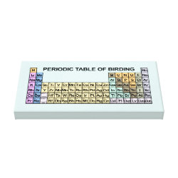 Premium Wrapped Canvas with Periodic Table of Birding design