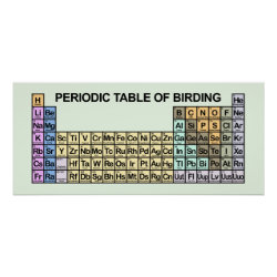 Matte Poster with Periodic Table of Birding design