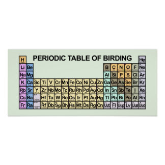 Periodic Table of Birding Poster