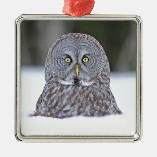 Periscope Ornaments