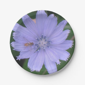 Periwinkle Blue Flower Paper Plate