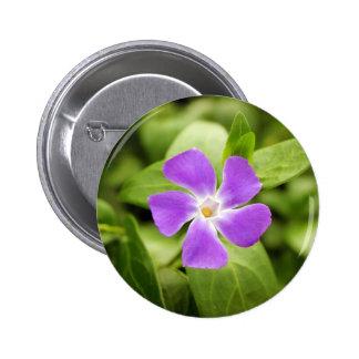Periwinkle Pinback Button