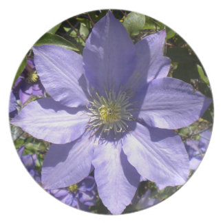 Periwinkle Clematis Plate