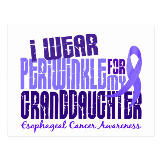 Periwinkle For Granddaughter 6.4 Esophageal Cancer Postcard