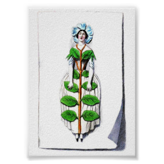 Periwinkle Lady Flower Painting Poster