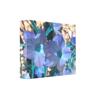 Periwinkle N Teal Nicotiana Wrapped Canvas Stretched Canvas Print