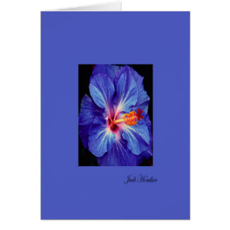 Periwinkle~One of the Most Worn Colors Card