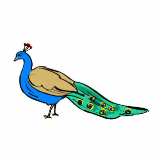Perkins Peacock Photo Cutout