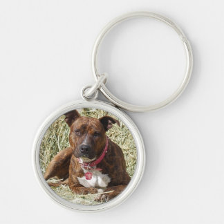 Perky Brindle Pit Bull on Hay Key Chains
