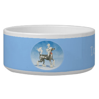 Perky Hairless Chinese Crested Dog Bowl