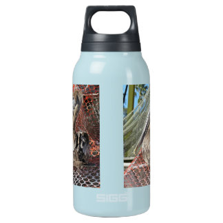 Perky Pelican Insulated Water Bottle