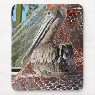 Perky Pelican Mouse Pad