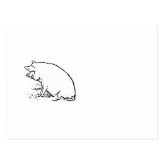 Perky Pig Sketch Design Postcard
