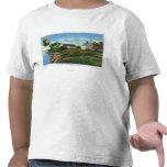 Perla de la isla de Orr Camisetas