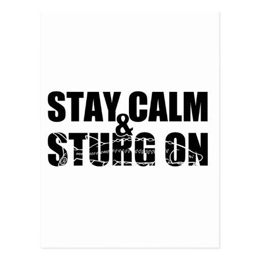 Permanezca la calma y Sturg encendido - Sturg blan Tarjetas Postales