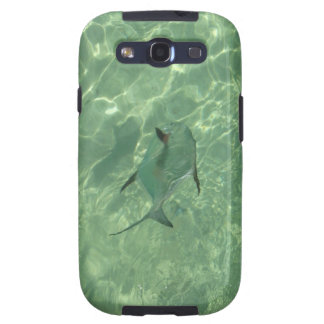 Permit on the flats samsung galaxy s3 cases