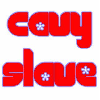 perno del cavyslave pin fotoescultura