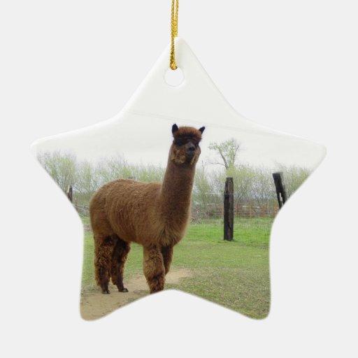Perno prisionero de la alpaca adorno navideño de cerámica en forma de estrella
