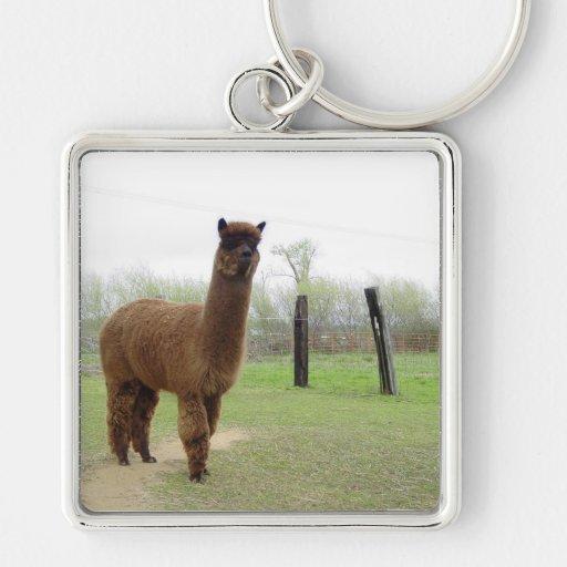 Perno prisionero de la alpaca llaveros personalizados