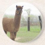 Perno prisionero de la alpaca posavasos personalizados
