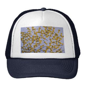Pernos amarillos del empuje en blanco gorras de camionero