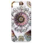 Peromedusae de Ernst Haeckel Funda Para iPhone 5 Barely There