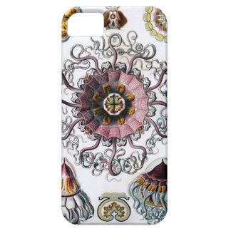 Peromedusae de Ernst Haeckel Funda Para iPhone 5 Barely There