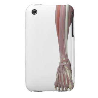 Peroneus Longus Case-Mate iPhone 3 Case