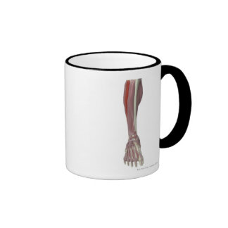 Peroneus Longus Coffee Mug