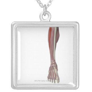 Peroneus Longus Square Pendant Necklace