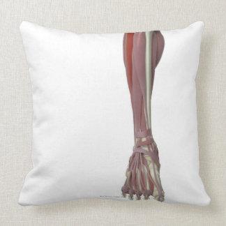 Peroneus Longus Throw Pillow