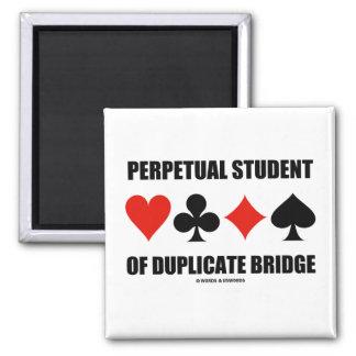 Perpetual Student Of Duplicate Bridge (Card Suits) Refrigerator Magnets