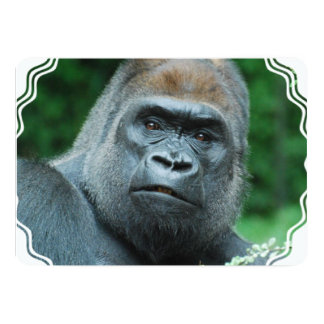 Perplexed Gorilla Card