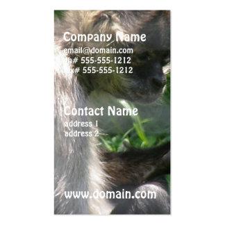 Perplexed Spider Monkey Business Card