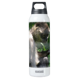Perplexed Spider Monkey SIGG Thermo 0.5L Insulated Bottle