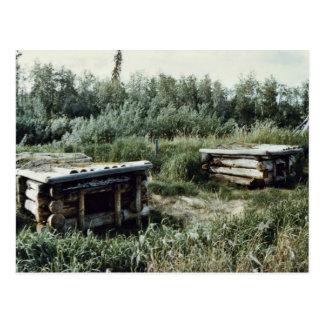 Perreras del perro, el campo del muchacho sueco postales