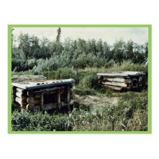 Perreras del perro, el campo del muchacho sueco tarjetas postales