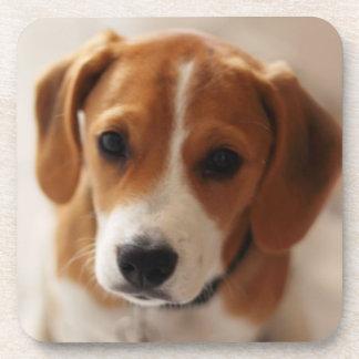 Perrito 2 del beagle posavasos de bebida