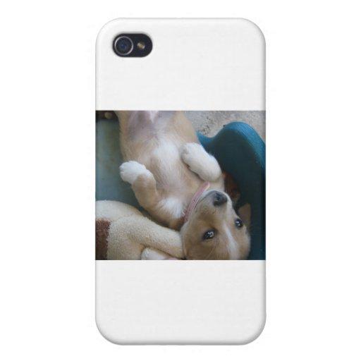 Perrito adorable 2 iPhone 4 cobertura