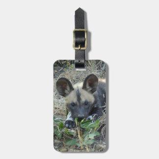 Perrito africano del perro salvaje etiquetas para maletas