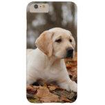 Perrito amarillo de Labrador en otoño Funda De iPhone 6 Plus Barely There